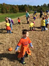 We-Are-Pumpkin-Hunters